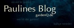 Paulines Blog