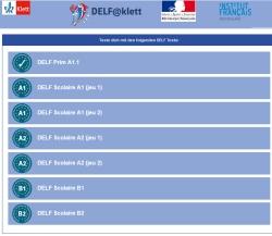 Delf-Test online